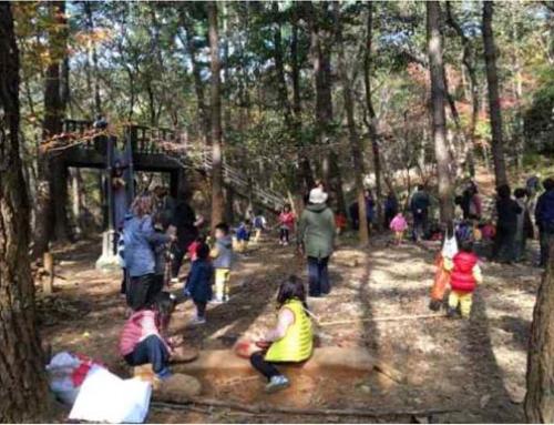 숲에서 뛰노는 행복한 아이들을 위한『유아숲』 조성